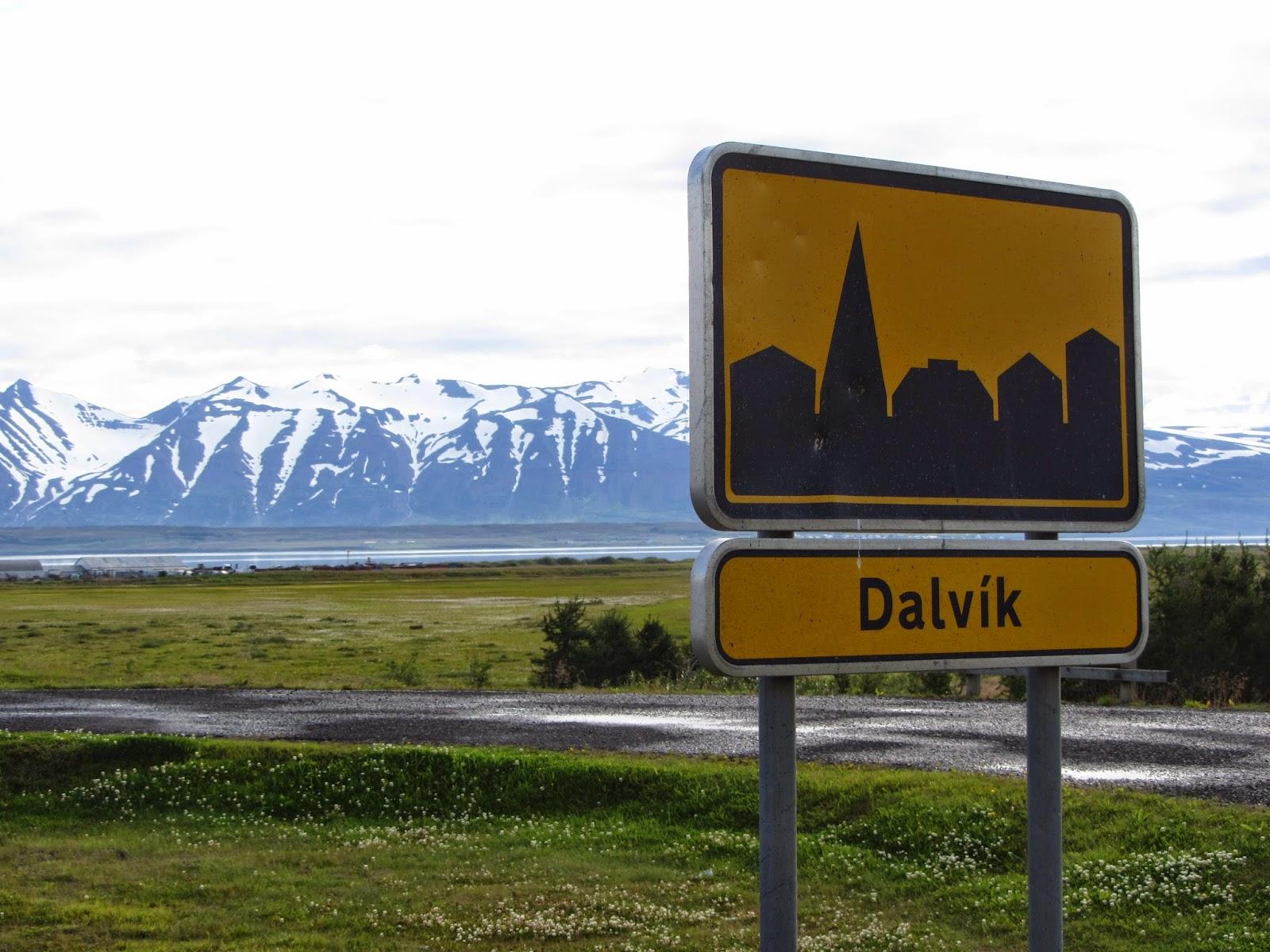 Observar BALEIAS EM DARVIK (um dos melhores locais da Islândia) | Islândia