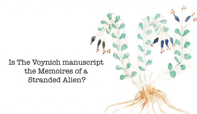 Is The Voynich Manuscript The Memoirs Of A Stranded Alien?