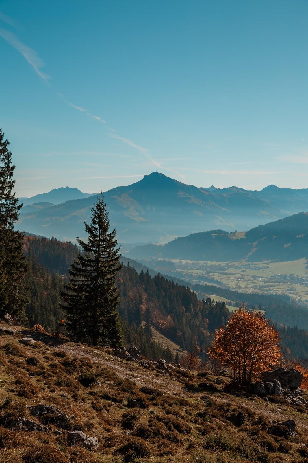 Bergtour Scheffauer  Wandern Wilder Kaiser  leichter Gipfel im Wilden Kaiser  Wandern-Tirol 03