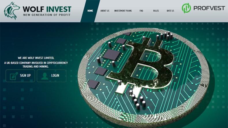Wolf Invest обзор и отзывы HYIP-проекта