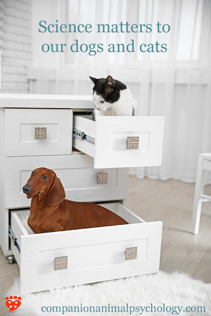 Science matters to our pets - like this cat and dog in file drawers