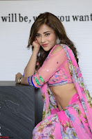Angela Krislinzki Rogue Movie Fame Telugu Actress in Saree Backless Choli 030.JPG