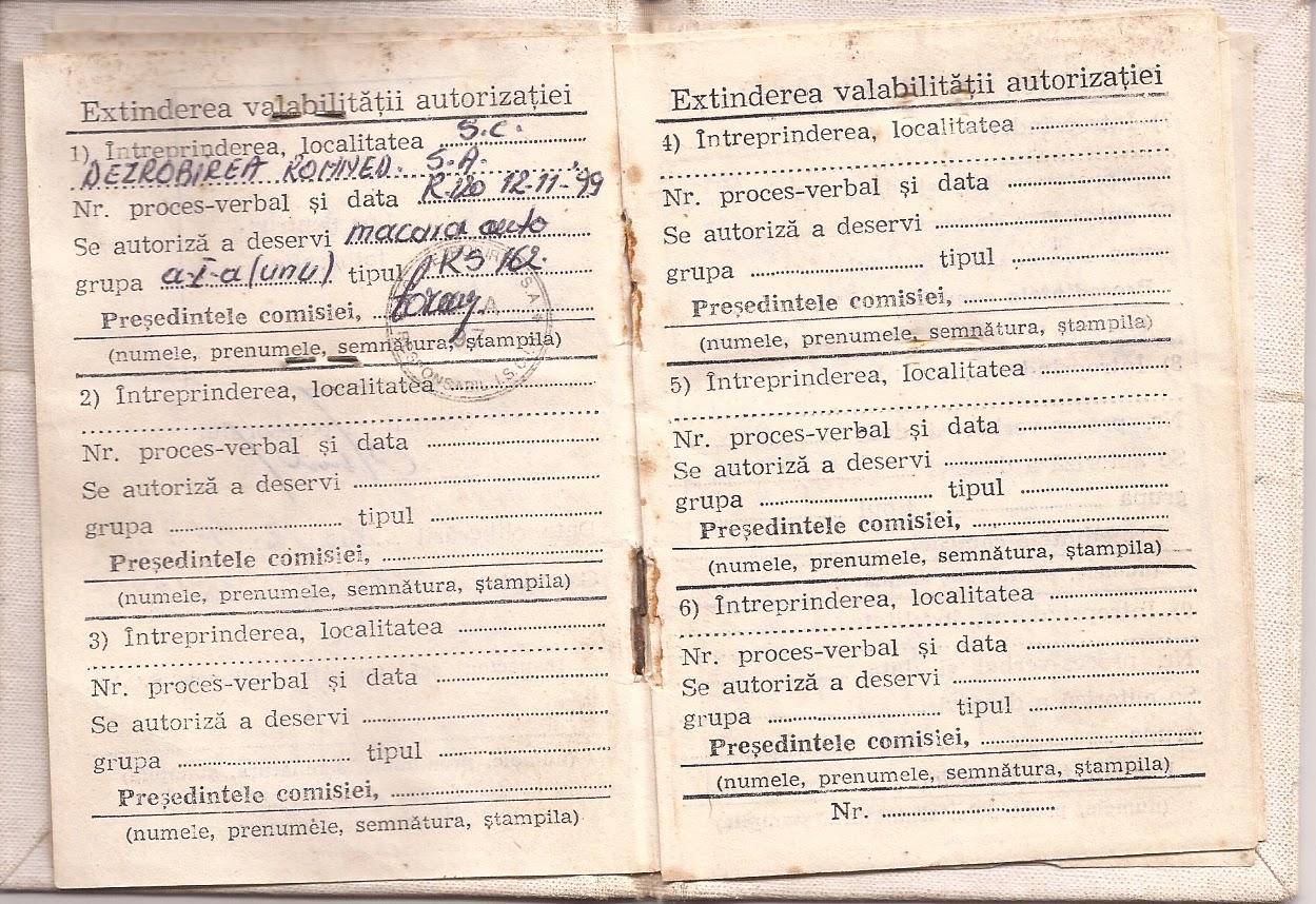 Operatore gru edile Mitea Vasile: CURRICULUM VITAE DI ...