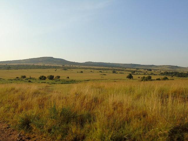 masai mara landscape kenya africa safari