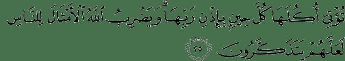 Surat Ibrahim Ayat 25