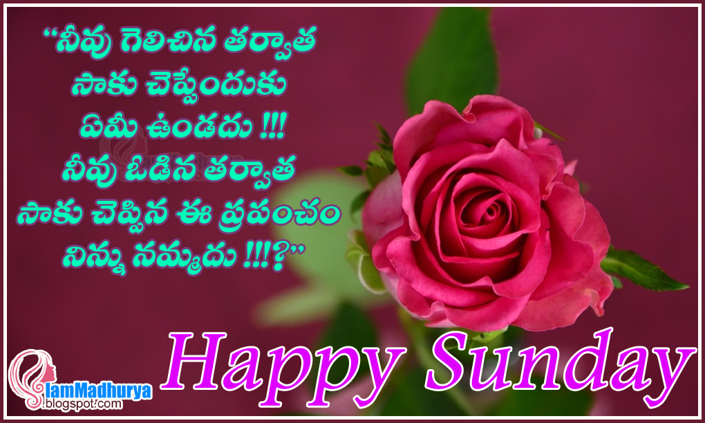 Quotes Wishes Greetings