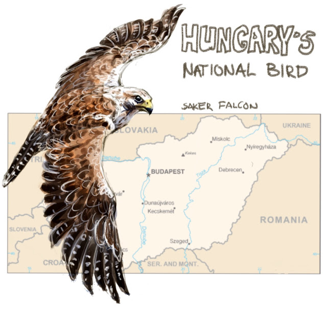 Hungary's national bird painting by Ulf Artmagenta