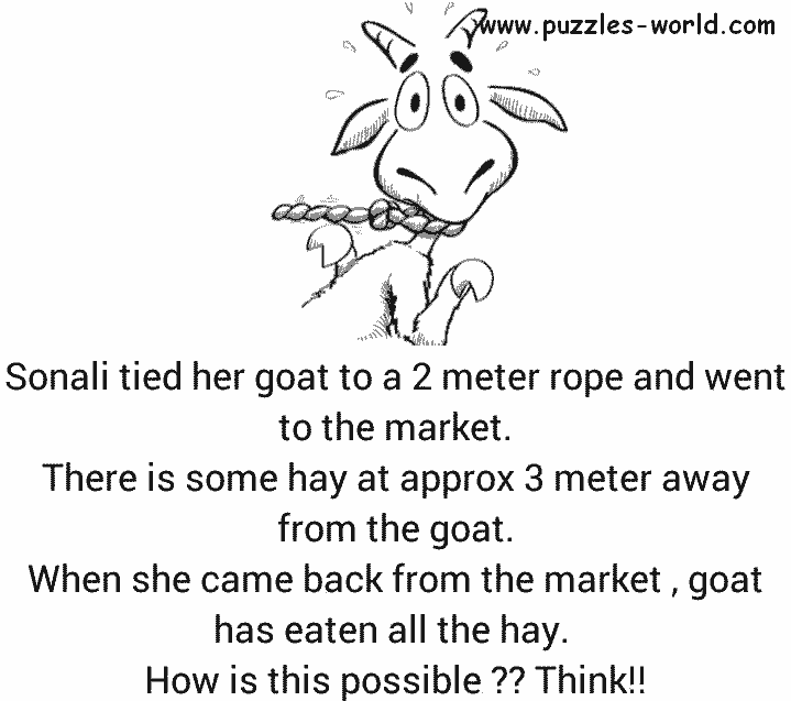 Goat tied to a rope puzzle