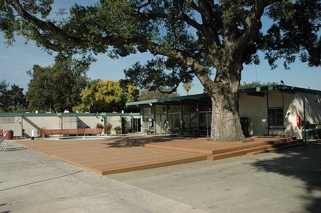 สร้างระเบียงบ้านทับต้นไม้ใหญ่