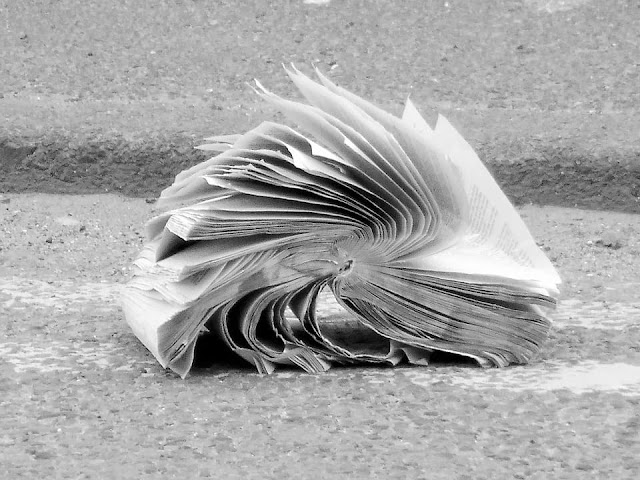 Pourquoi on n'aime pas la lecture ?