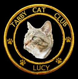 The Tabby Cat Club