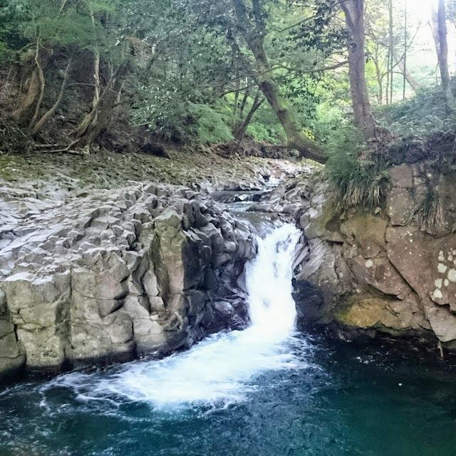 河津七滝 カニ滝