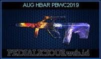 AUG HBAR PBWC2019