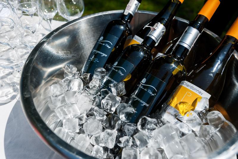 wino, czerwona oliwka, foodparing, sommelier, zycie od kuchni, akademia smaku, sokolow, uczta qulinarna, garden party, kukbuk, wino w lodzie, lod