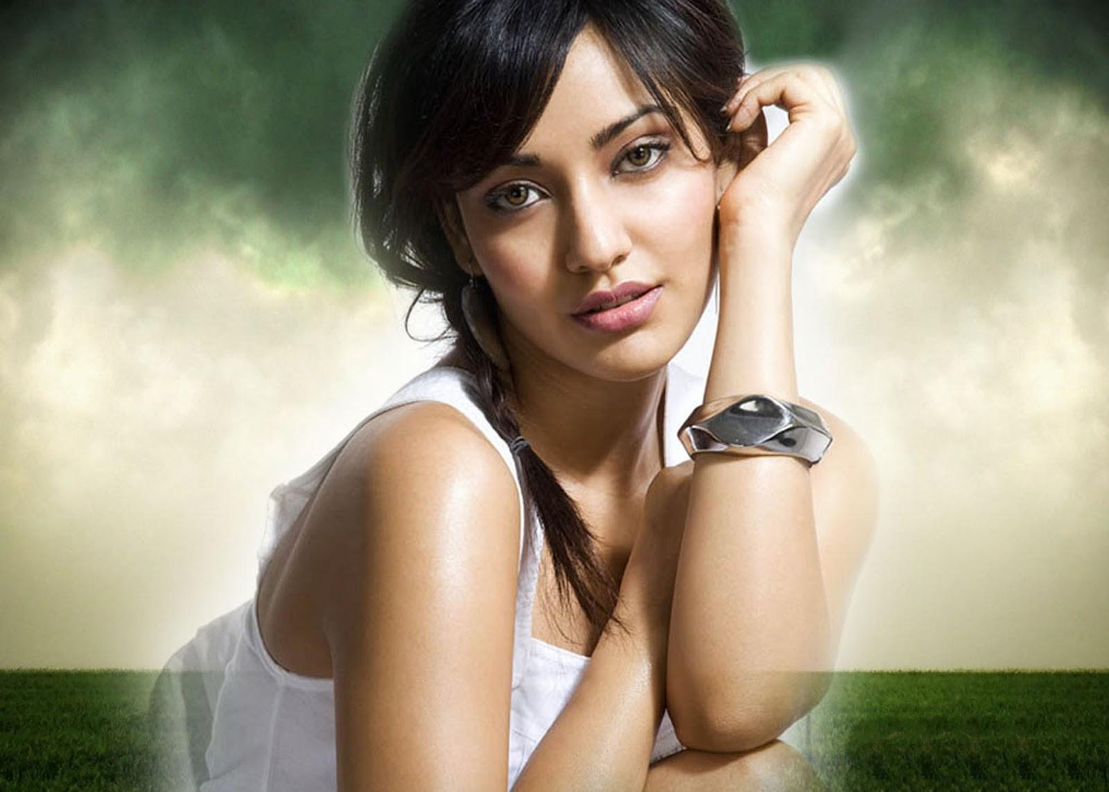 Bollywood Actresses Wallpapers Hd 2013: Neha Sharma Sexy Bollywood Actress
