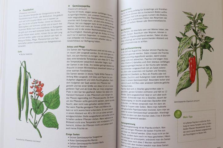 Buchvorstellung-Selbstversorgung-aus-dem-eigenen-Anbau-Steiermarkgarten