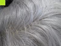Haut: Uniwigs Star Perücke, Kunsthaar, Lace-Front, sanfte Wellen, lang, Grau