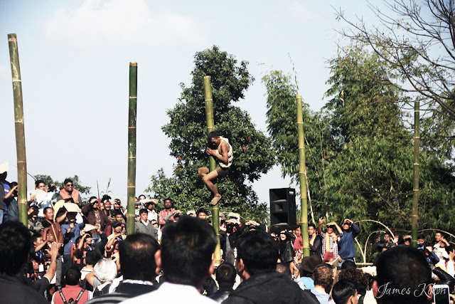 Bamboo pole climbing competition at the Nagaland Hornbill Festival 2015