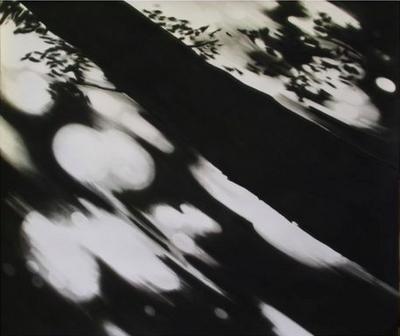 Carlijn Mens  Lindgehrn, Steigerwald, Eschenau, Duitsland (from project Preserved Places), 2011 charcoal on paper 196 x 230 cm