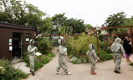 https://www.theguardian.com/education/mortarboard/2011/aug/30/beekeeping-in-schools