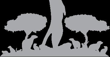 TaoSecurity: Suricata 2 0beta2 as IPS on Ubuntu 12 04