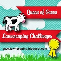 Winner of #98 Lawnscaping Challenge: