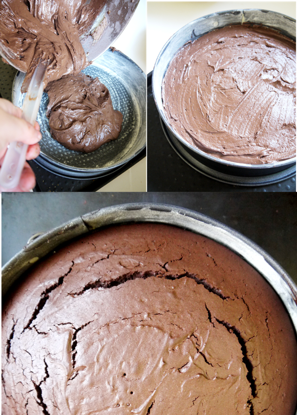 Chocolate Cake with Creamy Ganache Recipe - BirdsParty.com