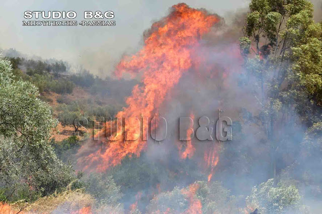 Πυρκαγιά στο Άγιο Όρος