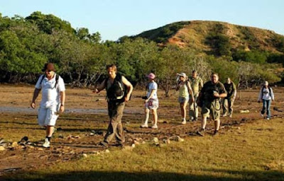 Trekking Activity - Komodo Island