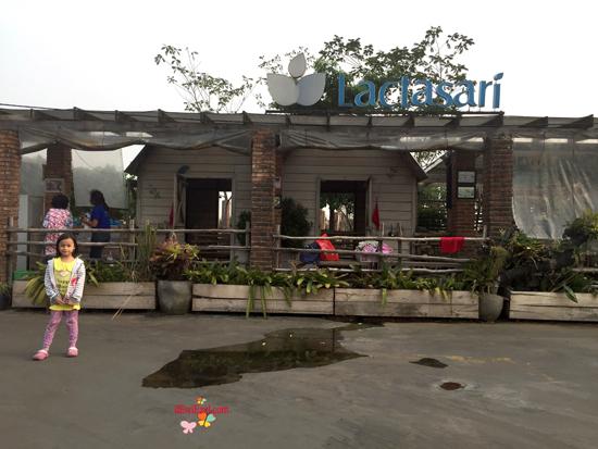 wisata memberi minum susu kambing sapi di Bandung,wisata untuk anak anak di Bandung,wisata baru di bandung untuk anak family,lactasari farm bandung review, pengalaman ke lactasari farm bandung,dimana tempat memberikan makanan sapi kambing di mall,dimana tempat memberikan makanan minum susu sapi kambing di mall,
