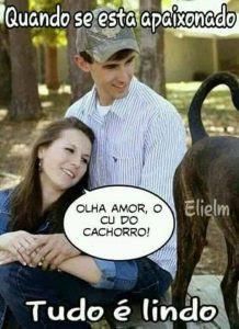 memes de amo, memes, memes brasil, memes apaixonado