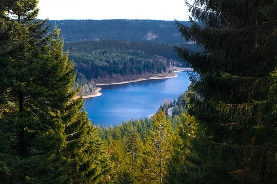 Black Forest National Park, Baden-Württemberg