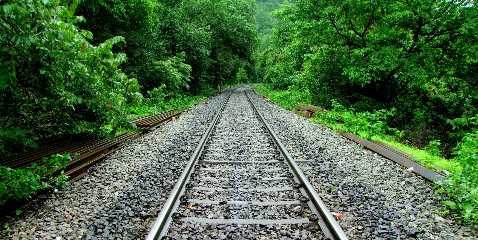 Seven Best Train Routes In India That Take You Close to ...