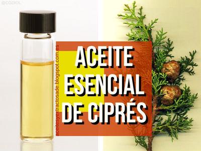 Aceite Esencial o Esencia de Ciprés, Propiedades Medicinales