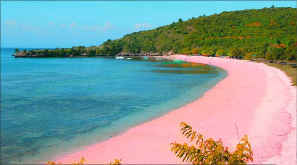 Pink Beach wisata indonesia paling keren dan cantik manis