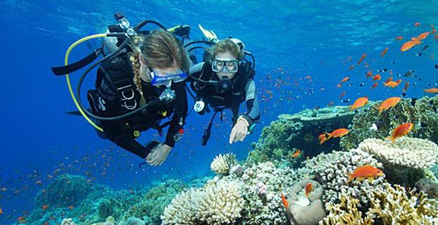 Pulau Moyo NTB, Bulan Madu Romantis Menikmati Keindahan Bawah Laut
