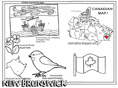 Purple violet flower countryside wildlife image Fredericton City New Brunswick Canada coloring sheet