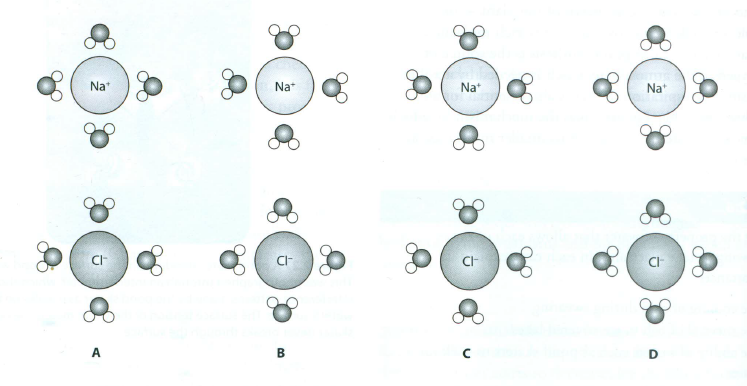 16 Summary Of Biological Molecules