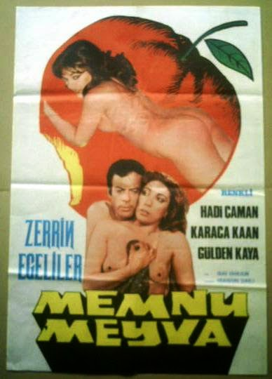 Memnu Meyve (1979)