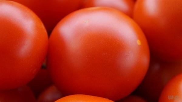 西紅柿具有兩面性:營養價值雖高,也有不適宜人群
