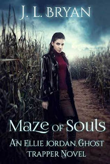 Maze of Souls by J.L. Bryan