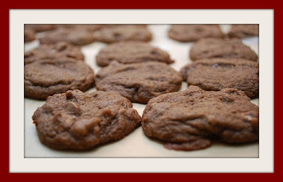 No Bake Chocolate Nut Cookies