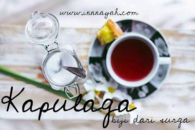 Manfaat kapulaga, kapulaga untuk kesehatan, kapulaga tanaman obat, kapulaga untuk teh