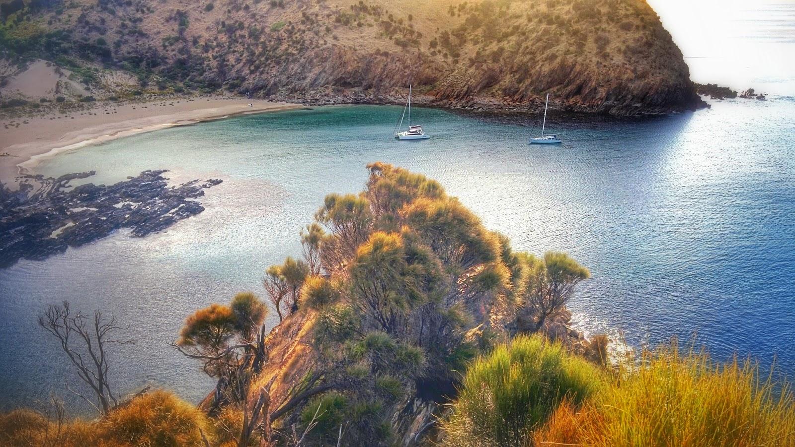 Cruise Wedge Island Althorpe Island And Western River