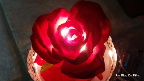 un blog de fille diy rose sous cloche la belle et la b te id al saint valentin. Black Bedroom Furniture Sets. Home Design Ideas
