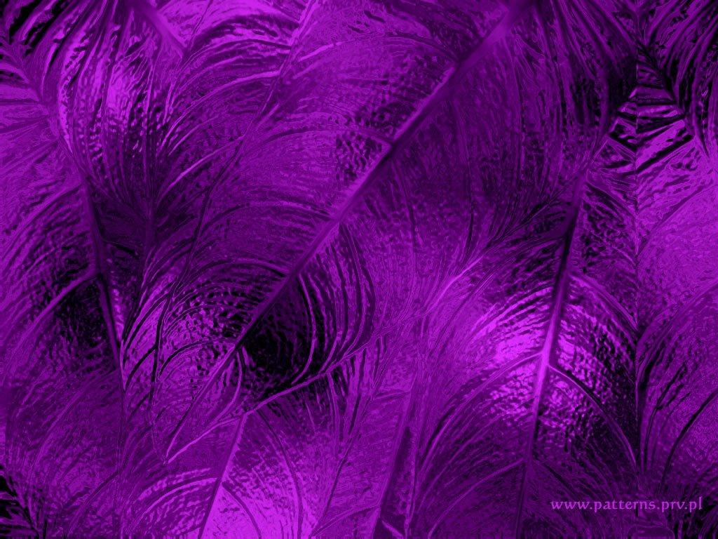 lavender background design - photo #8