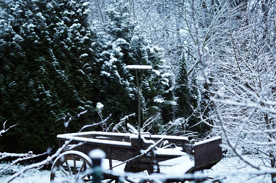 Blog + Fotografie by it's me! - Winter für einen Tag - verschneiter Kutschwagen