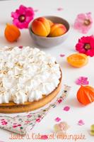 http://moi-gourmande.blogspot.fr/2016/08/tarte-labricot-meringuee.html