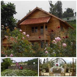 Hotel Kebun Mawar Situpaha Samarang Garut