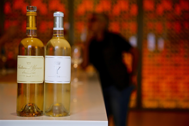 chateau yquem and the dry white Y wine